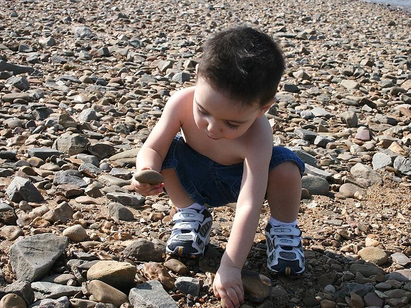 Seashell art for kids