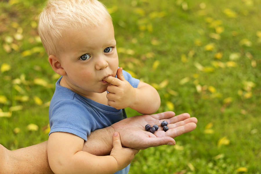 Snacking is a great way to wean an extended breastfeeding toddler