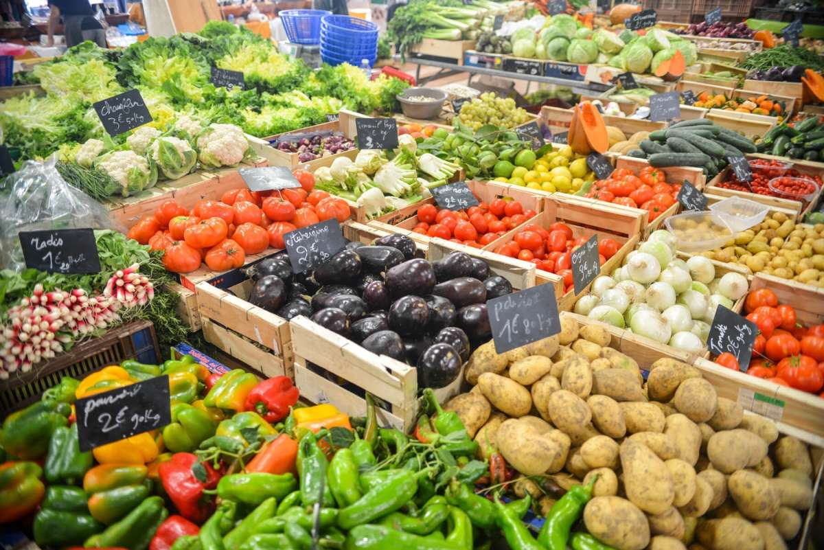 Colorful Array of Vegetables