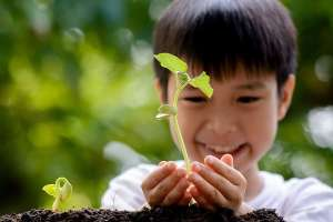 Young Boy Holding Seedling in Hands