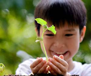 Top 10 Earth Day Books for Children