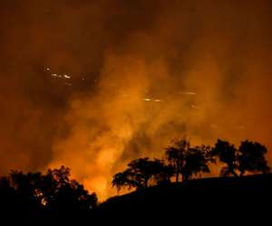 How to make a wildfire safety plan
