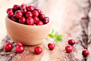 Thanksgiving Cranberry Recipes
