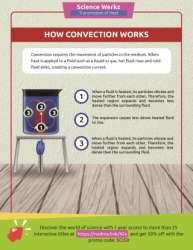 Understanding Convection