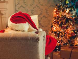 santa claus sitting at couch