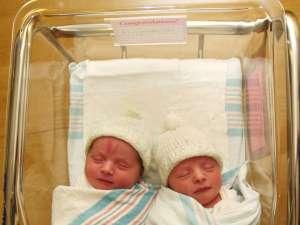 twin babies in hospital