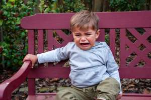 toddler having a temper tantrum or sensory meltdown