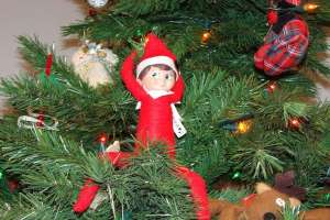 Picture of Elf on The Shelf doll sitting on Christmas tree