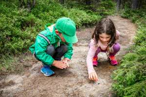5 fun and educational activities for summer
