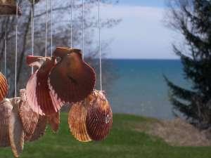 seashellwindchime