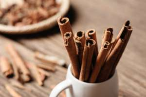 Cinnamon Stick Drawing Activity for Kids