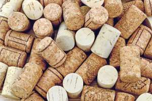 Cork Creations Activity for Kids