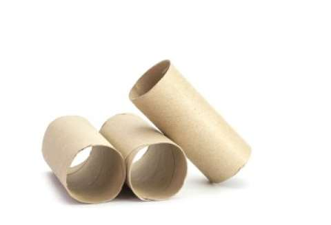 Three Toilet Paper Tubes on White Background
