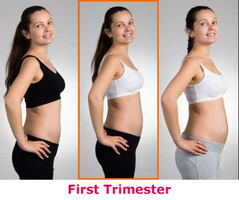 Pictures of a two months pregnancy