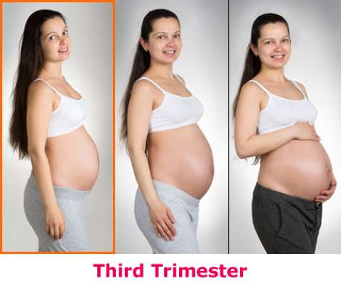 Pictures of a month pregnancy