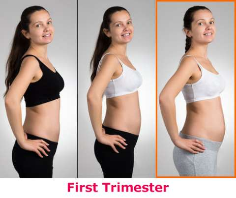 Images of one month pregnant belly