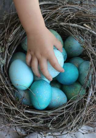 Natural-Dyed Robin Easter Eggs