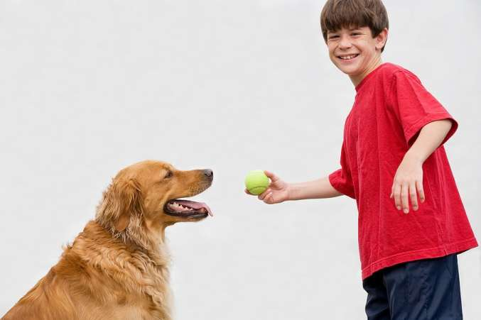 Summer Science for Kids, Child plays with dog to study animals