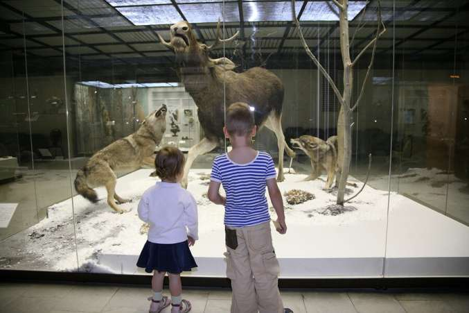 ChildreninMuseum