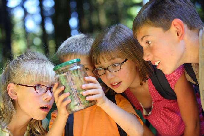 Tips for Learning Outside of School, Group of kids studying bugs inside a jar at summer camp