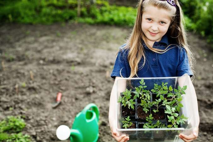 Summer Science for Kids, Child holding seedlings to plant in garden as backyard science activity