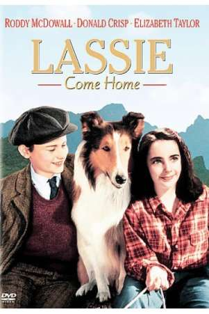 Lassie Come Home Movie