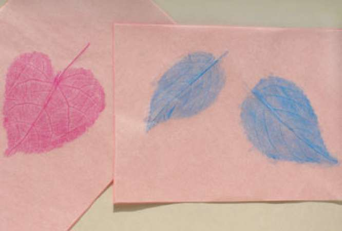 LeafRubbings,Fall,AutumnCrafts