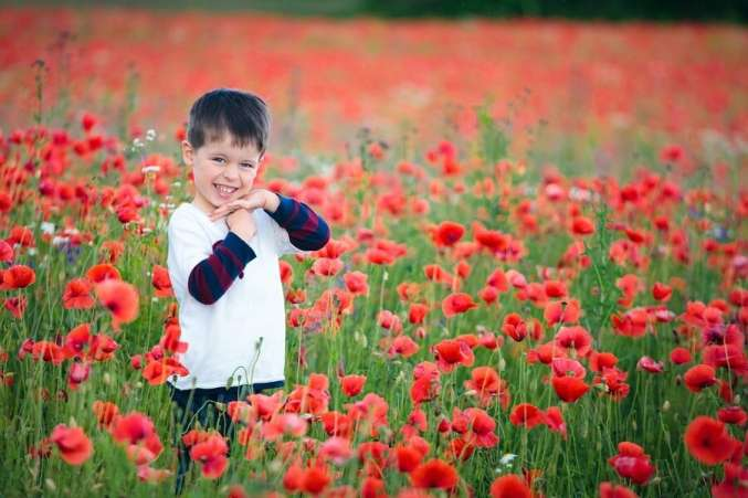 Little boy standing in field of poppies and wildflowers