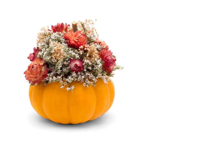 Pumpkincenterpiece746513