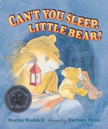 book for child afraid of dark, Cant Sleep Little Bear