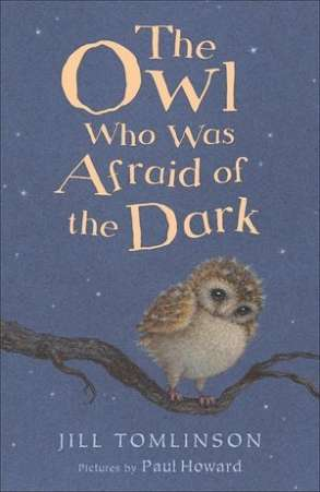 book for child afraid dark, Owl Afraid of Dark