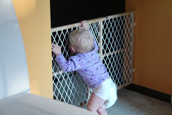 toddler standing at baby gate