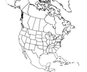 Blank Black and White Map of North America - U.S., Canada, Mexico