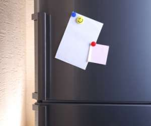 Picture Magnets Activity for Kids
